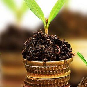 Оценка эффективности инвестиций (вложений): методы и примеры
